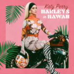 Katy Perry - Harleys In Hawaii ARTWORK
