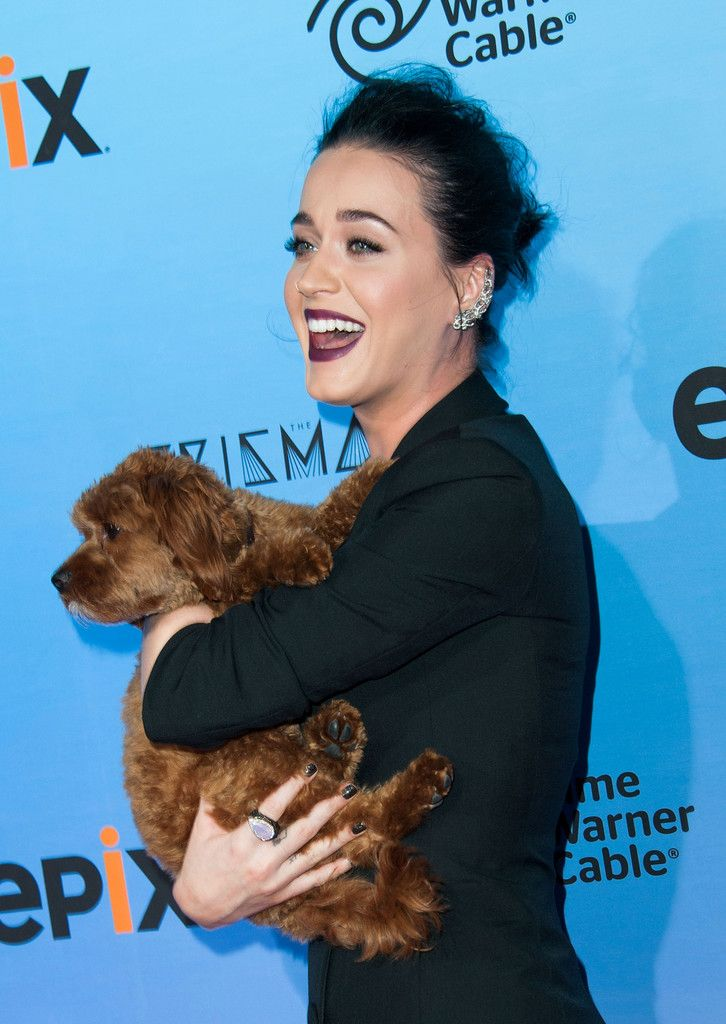 Katy Perry- The Prismatic World Tour Screening_159