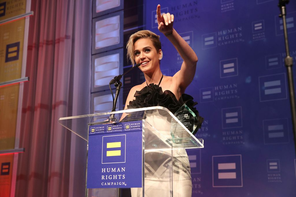The Human Rights Campaign Gala_004