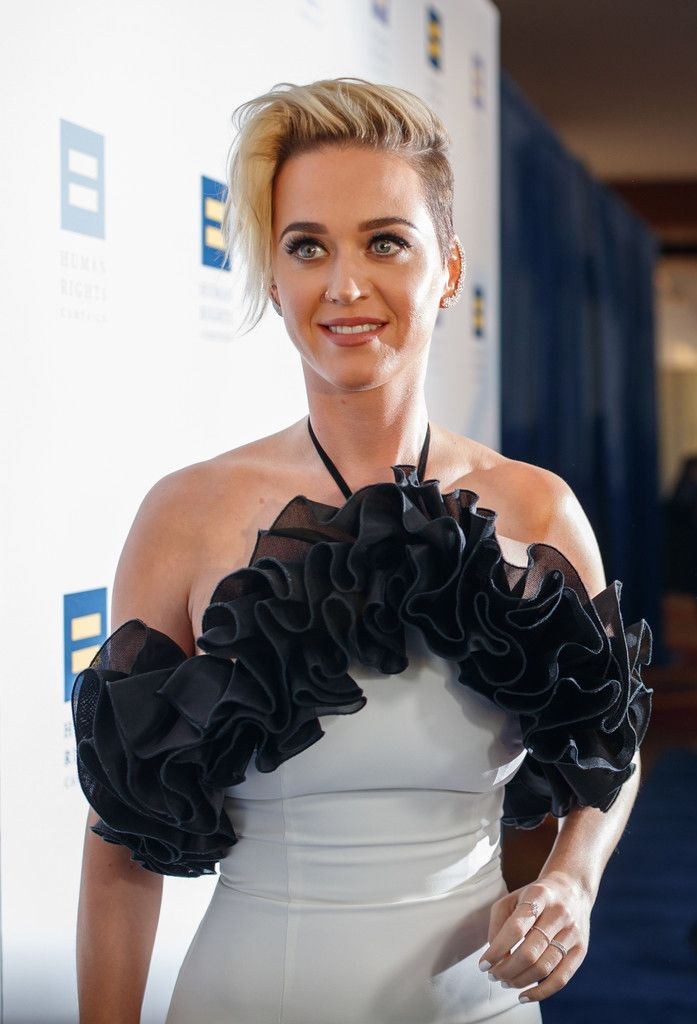 The Human Rights Campaign Gala_011