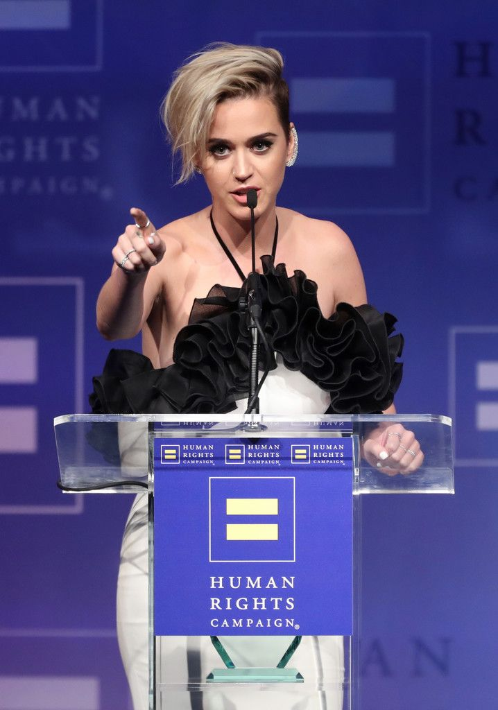 The Human Rights Campaign Gala_024