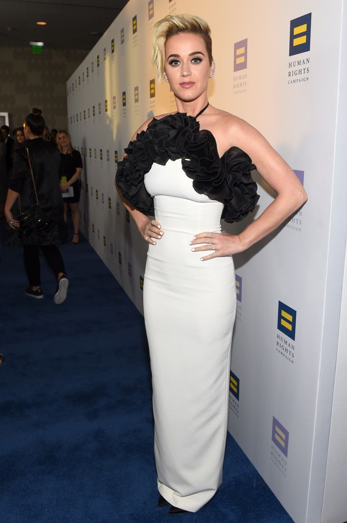 The Human Rights Campaign Gala_030