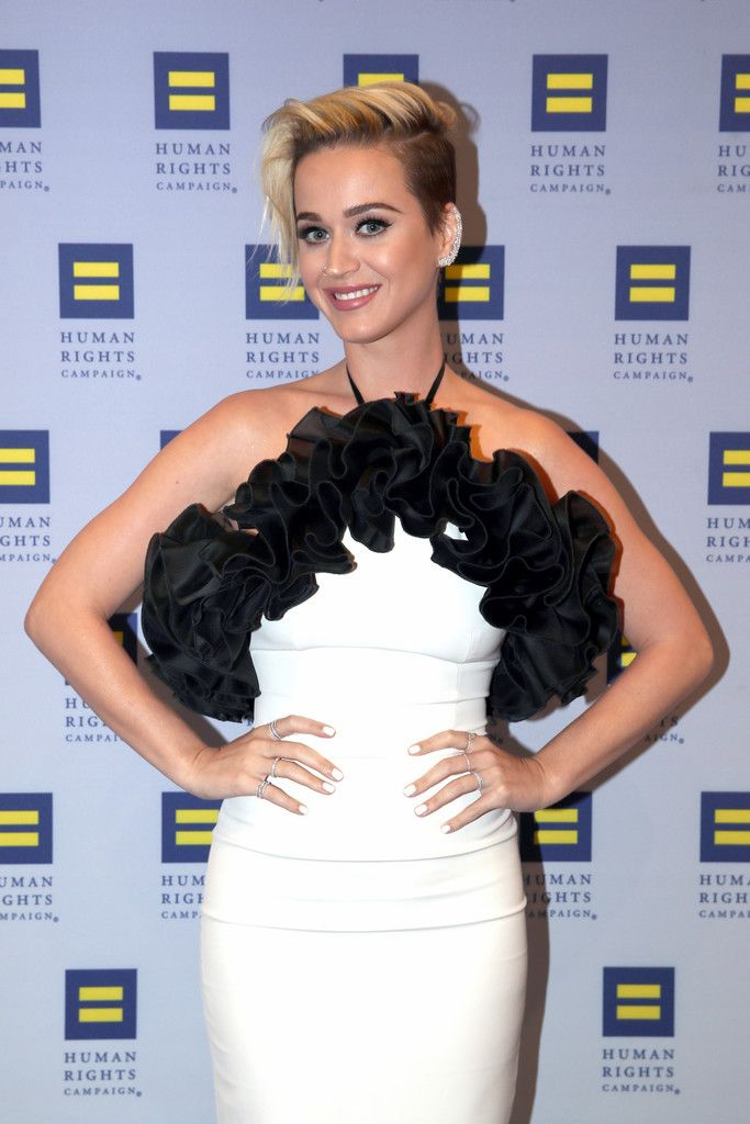 The Human Rights Campaign Gala_032