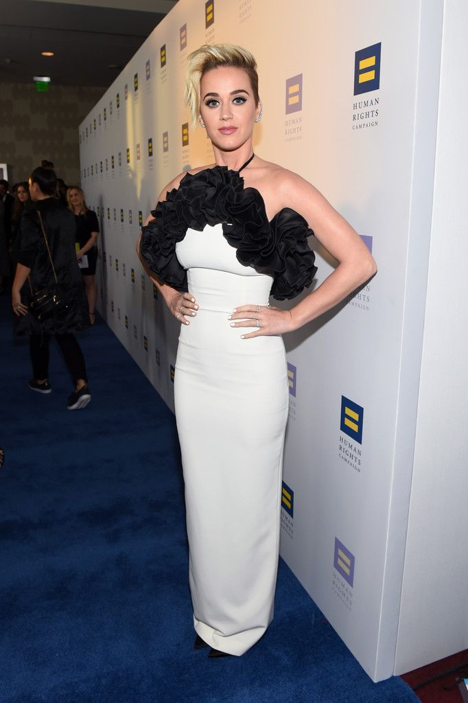 The Human Rights Campaign Gala_033
