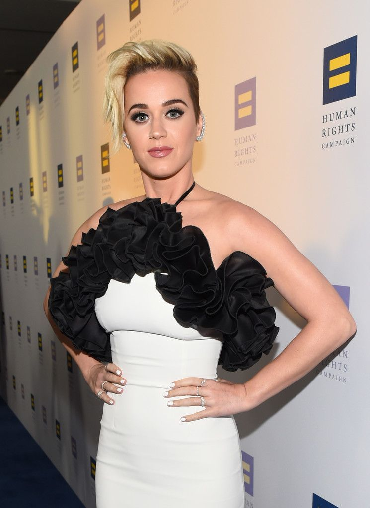 The Human Rights Campaign Gala_035
