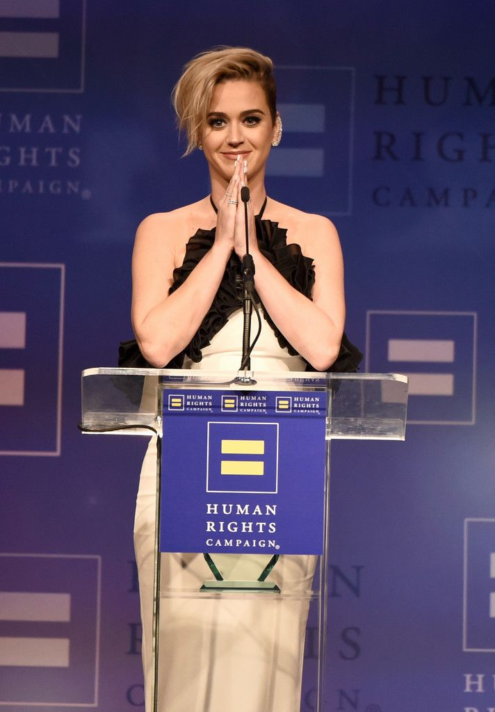 The Human Rights Campaign Gala_045