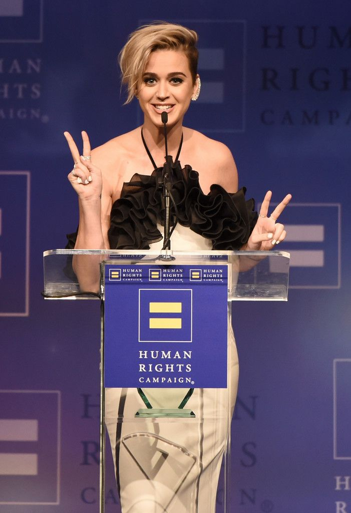 The Human Rights Campaign Gala_050