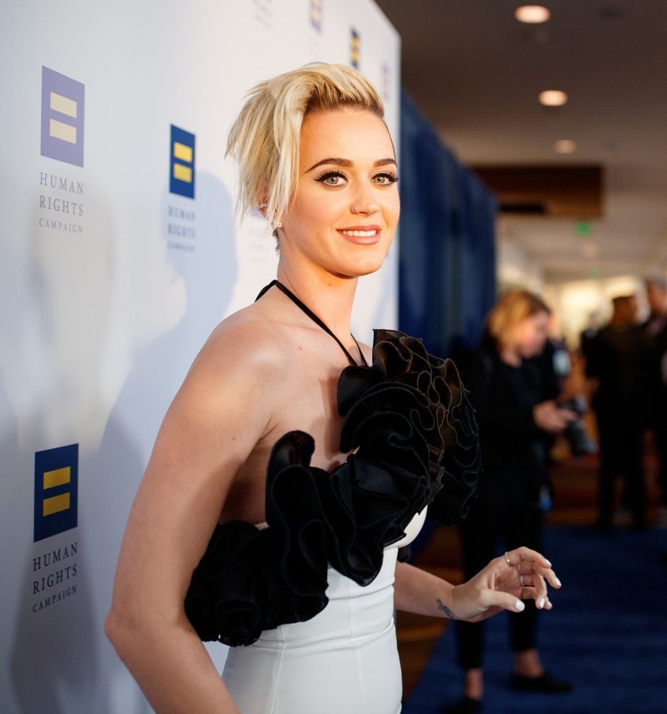 The Human Rights Campaign Gala_061