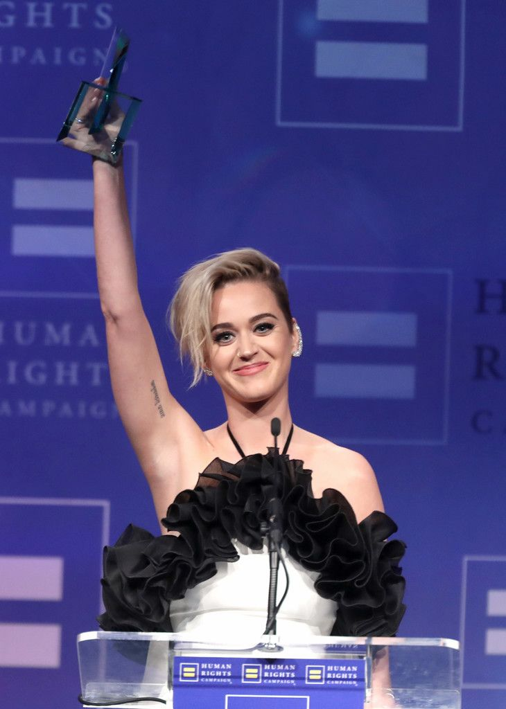 The Human Rights Campaign Gala_064