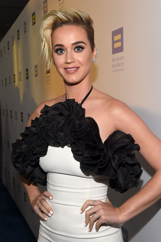 The Human Rights Campaign Gala_066