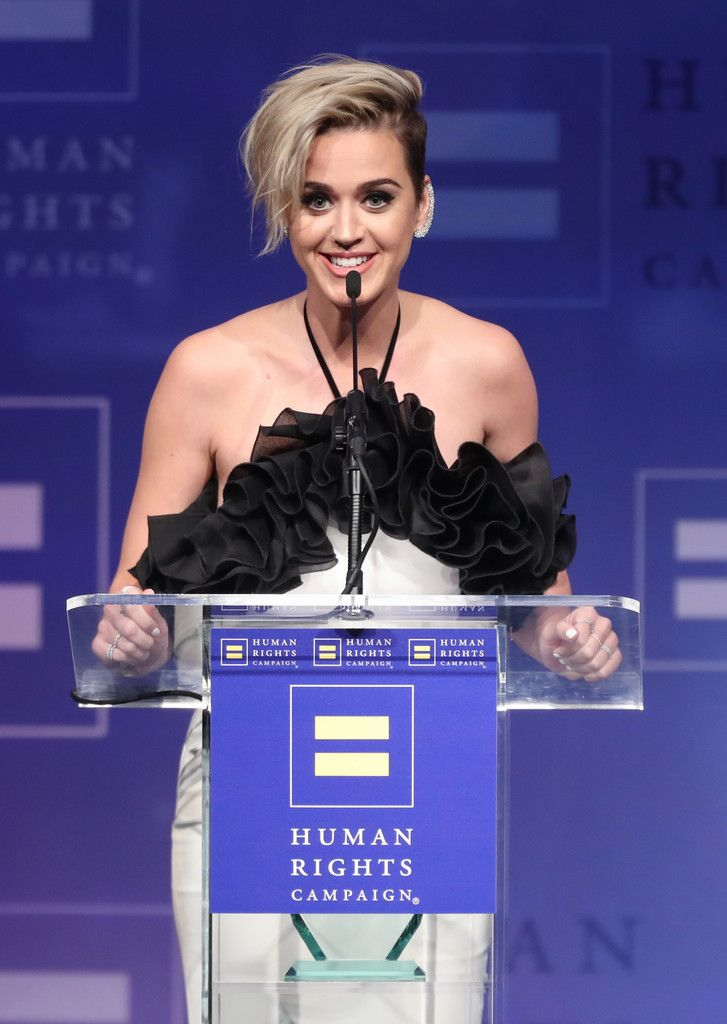The Human Rights Campaign Gala_071