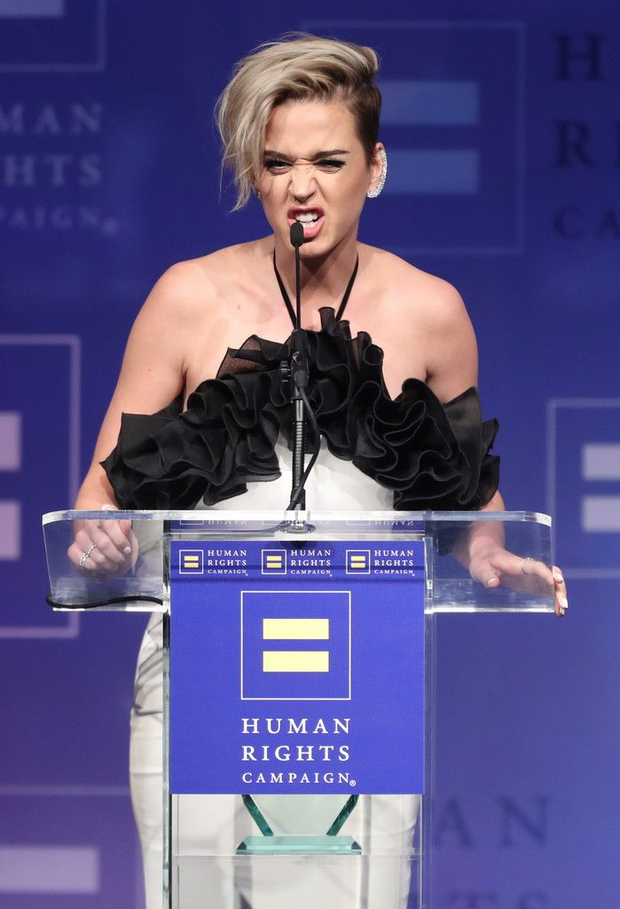 The Human Rights Campaign Gala_073
