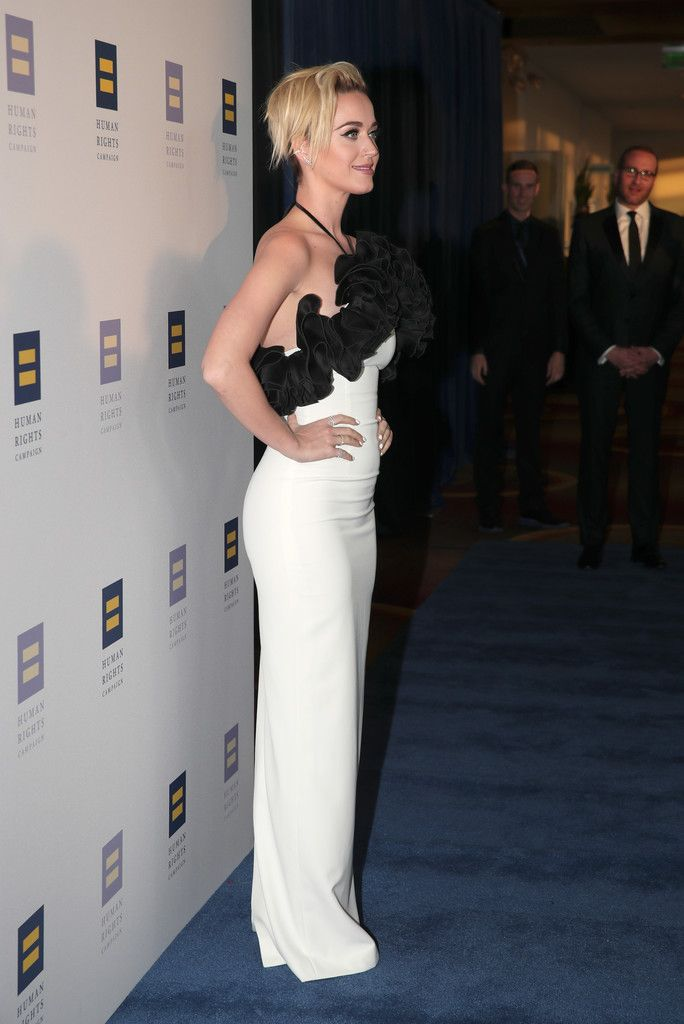 The Human Rights Campaign Gala_074