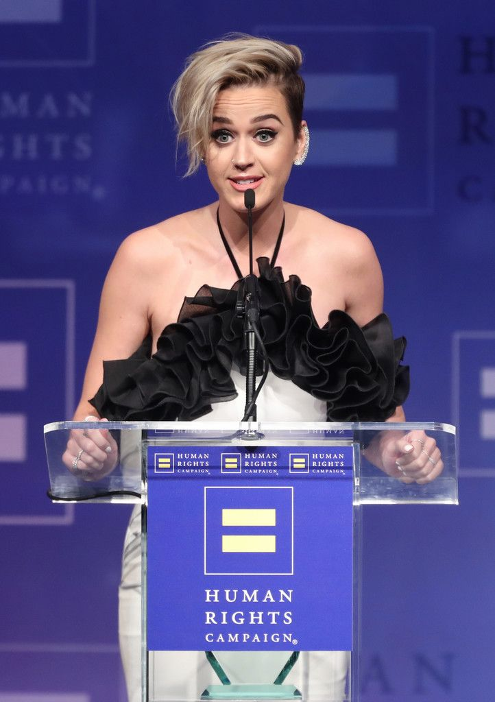 The Human Rights Campaign Gala_076