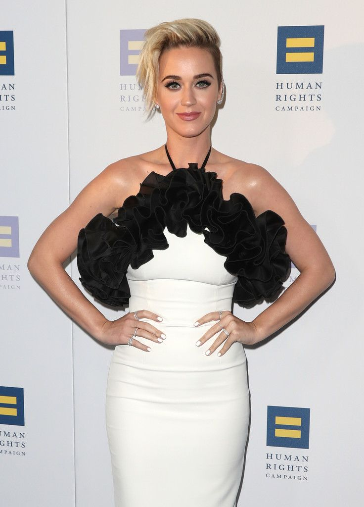 The Human Rights Campaign Gala_079