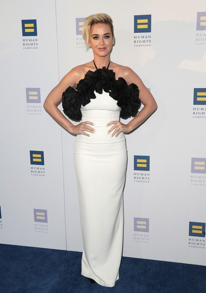 The Human Rights Campaign Gala_088